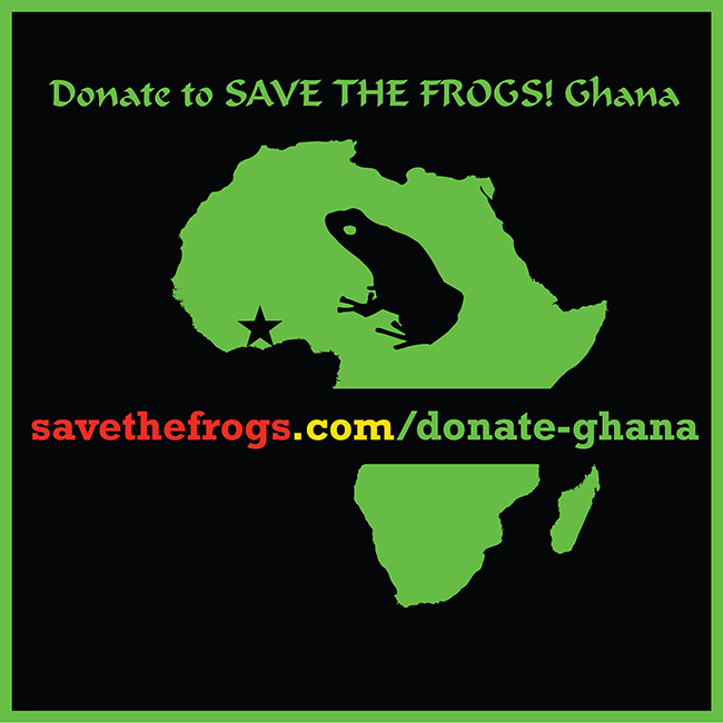 Donate Save The Frogs Ghana