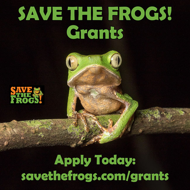 Save The Frogs Grants