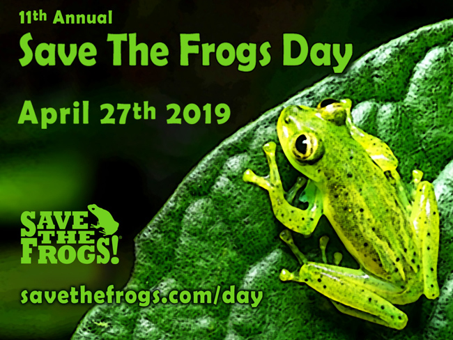 Save The Frogs Day 2019