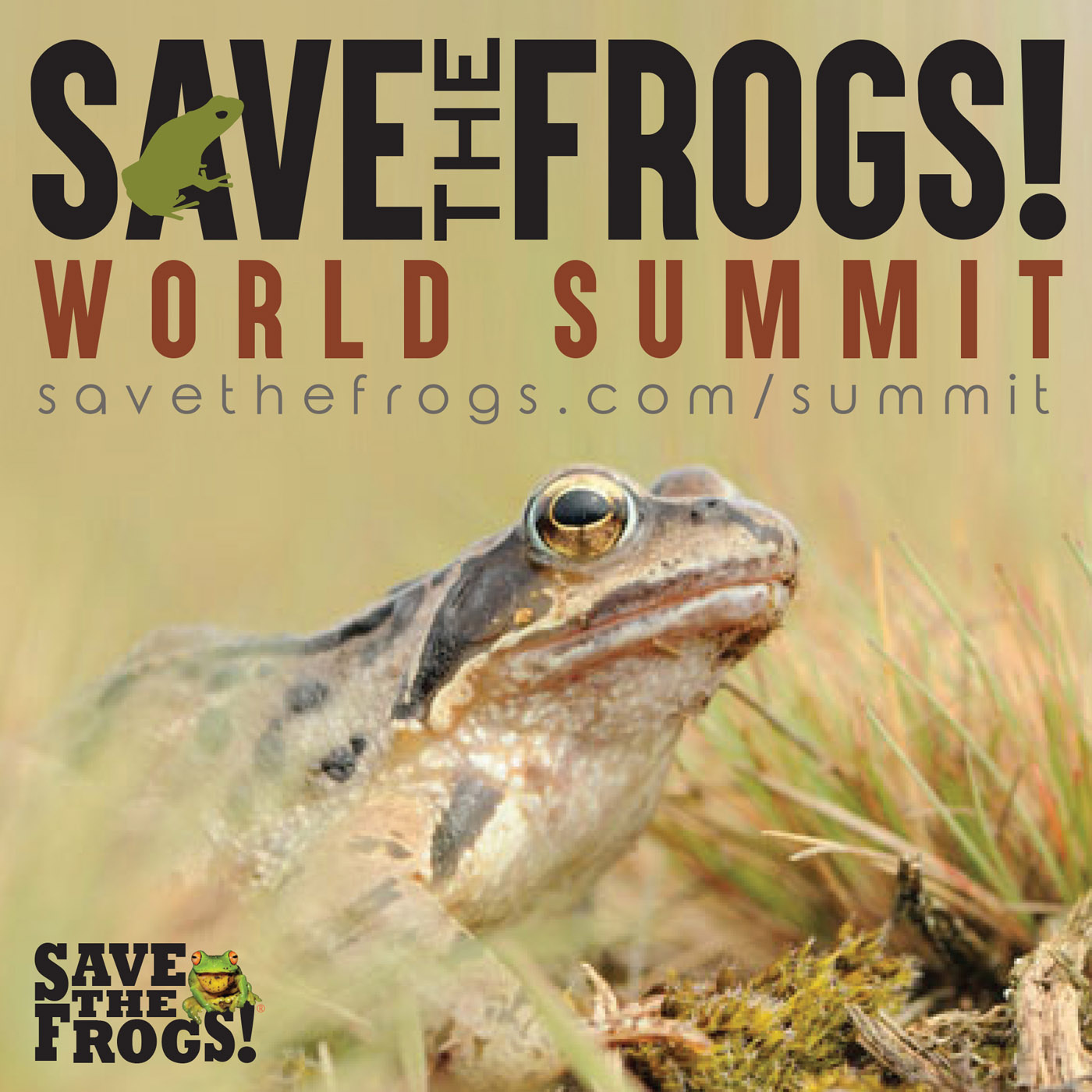save the frogs world summit 2018