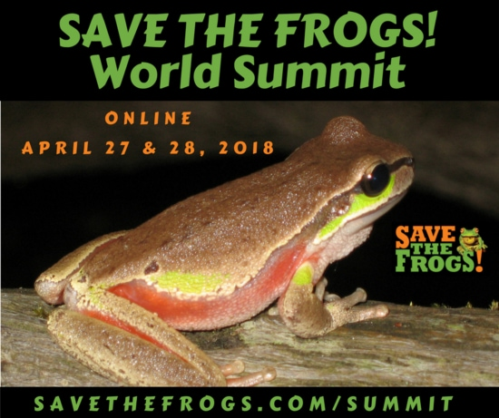 save the frogs world summit