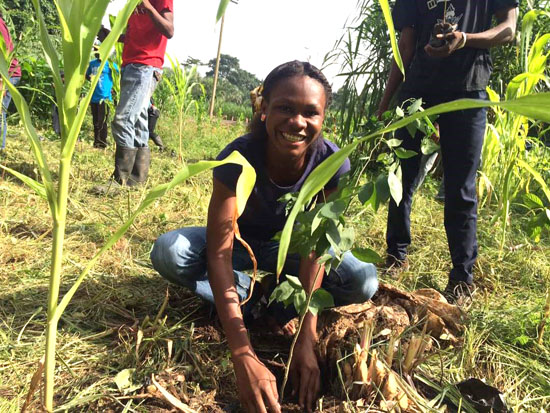 knust chapter member planting a tree b