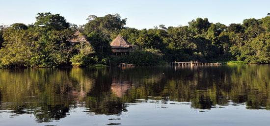 la selva amazon ecolodge ruth van sciver 23