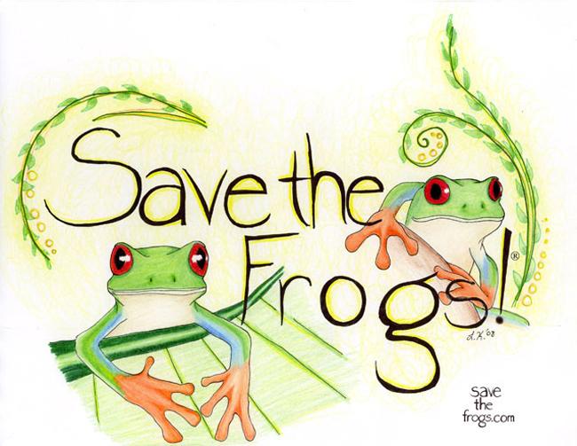 red-eyed treefrogs art
