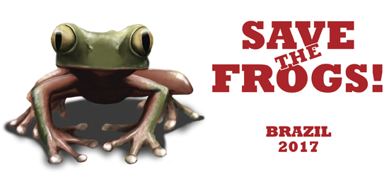 save the frogs brazil logo