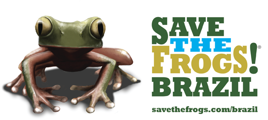 logo save the frogs brazil official 550