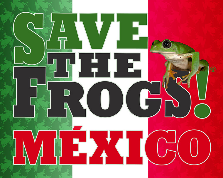 SAVE THE FROGS! Mexico Logo