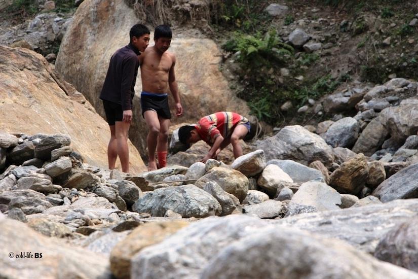 manaslu Local boys helping in stream frogs survey biraj shrestha