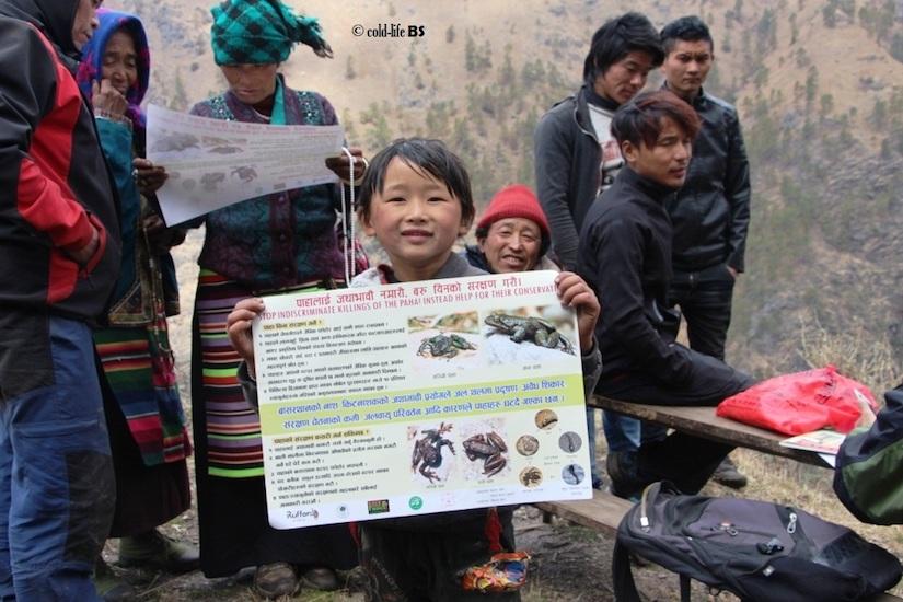 manaslu Local kid displaying paha conservation poster biraj shrestha