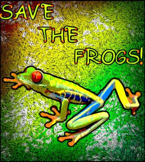 Frog Art by Raikoumoon