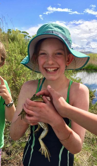 Amphibian Careers