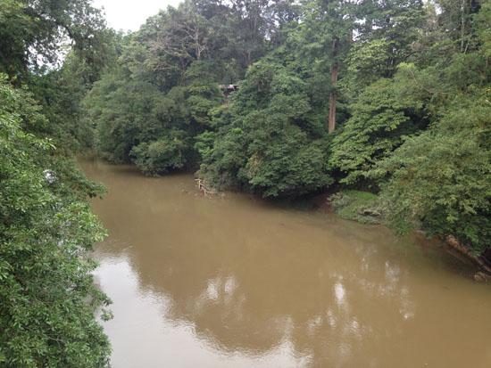 sarapiqui la selva river