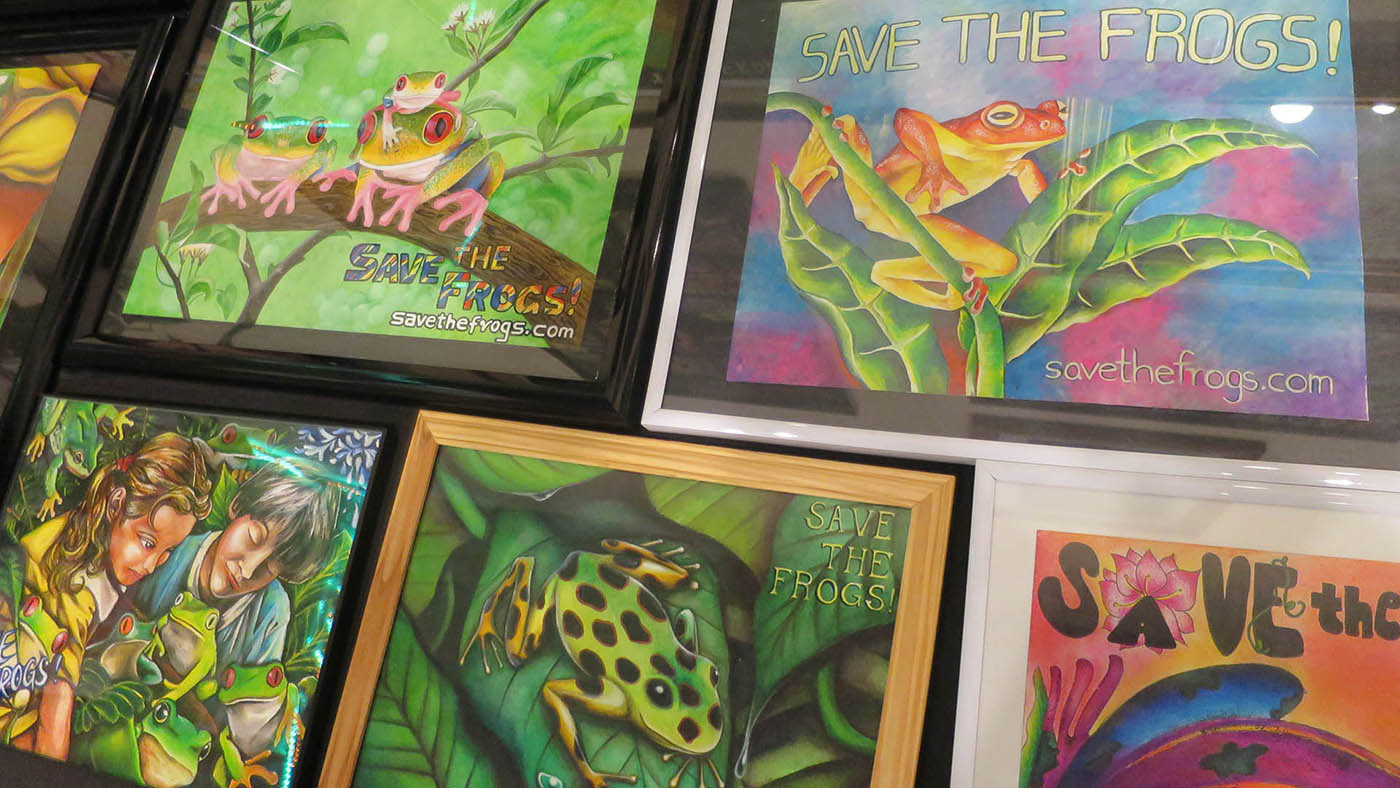 Frog Art at the SAVE THE FROGS! Education Center in Berkeley