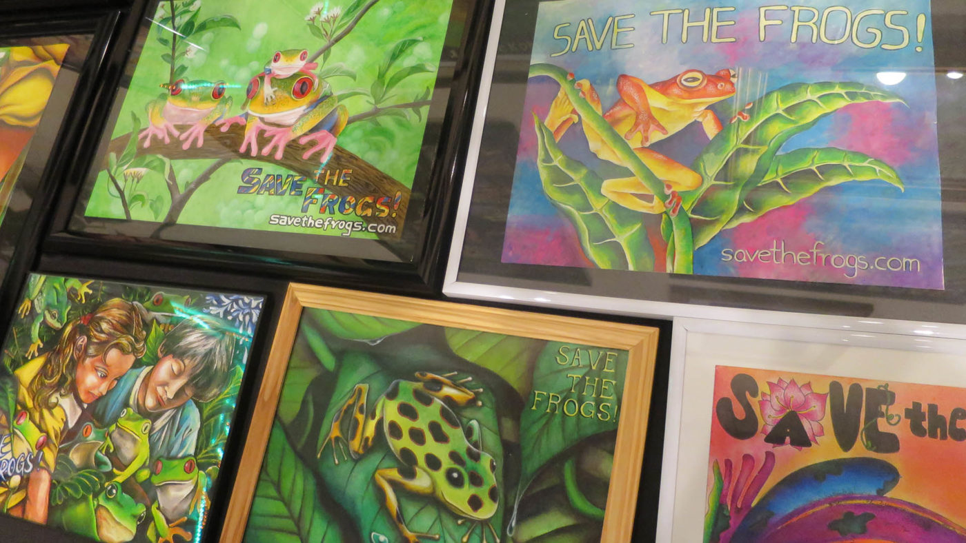 Save The Frogs Art
