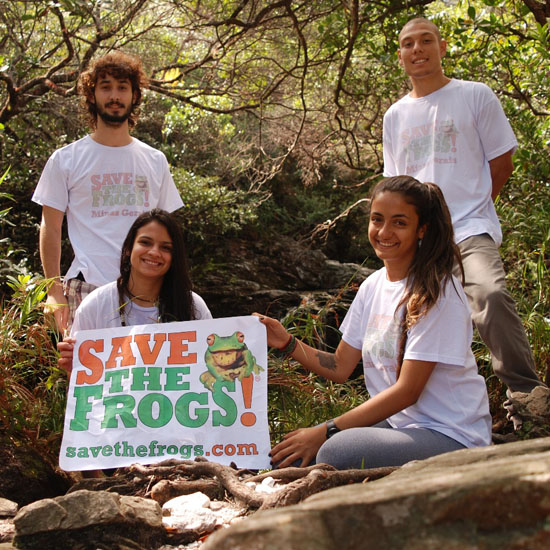 save the frogs minas gerais
