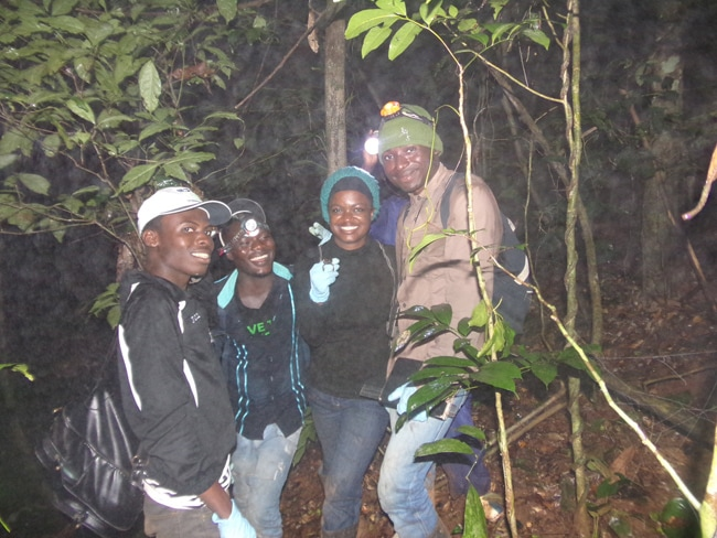 Amphibian Night Survey