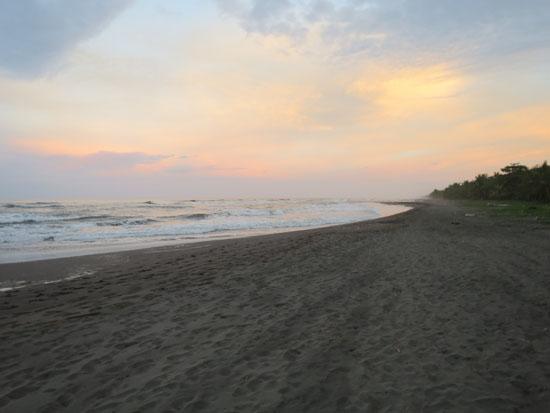 tortuguero beach 3
