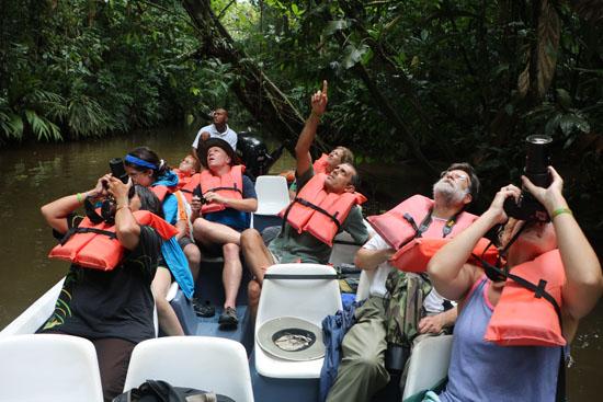 tortuguero river pointing