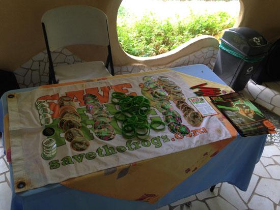 tortuguero stf table