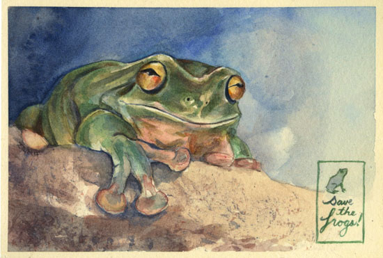 save the frogs art competition